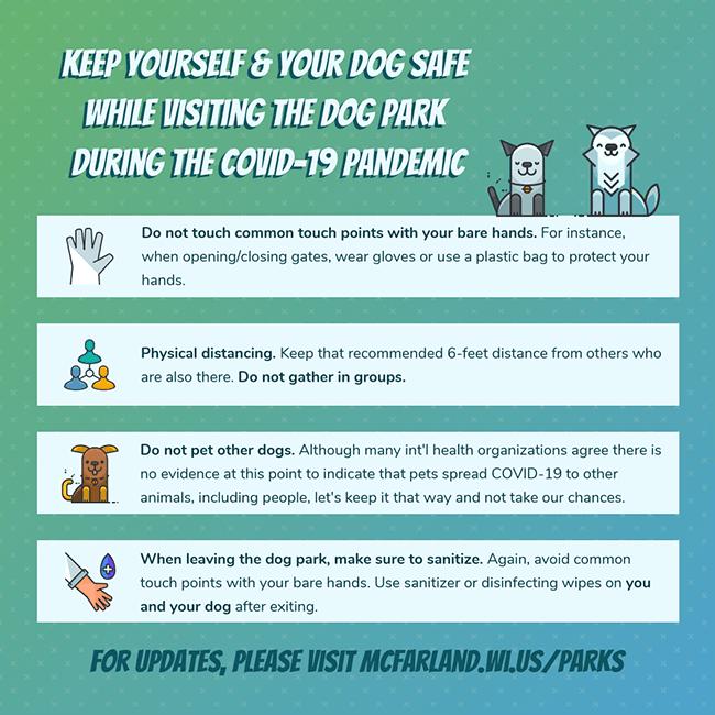 Dog Park Precautions